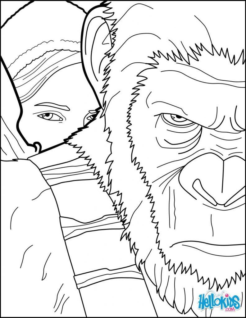 Arcimboldo Ausmalbilder  Affen Zum Ausmalen Einzigartig Arcimboldo Ausmalbilder
