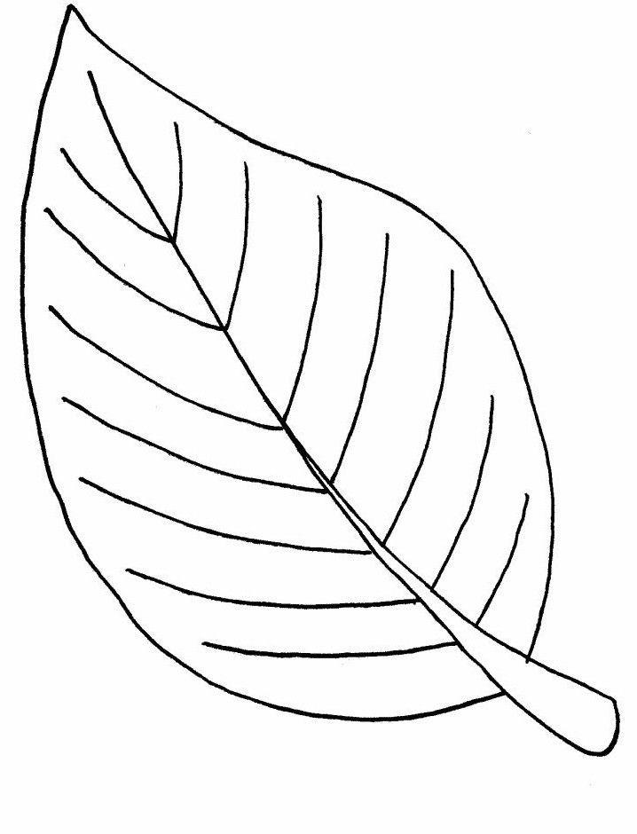 Ausmalbilder Blätter  Ausmalbilder Malvorlagen – Blätter kostenlos zum