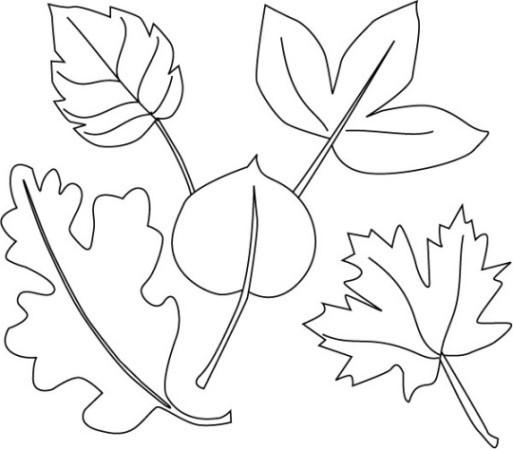 Ausmalbilder Blätter  Vorlagen zum Ausmalen Malvorlagen Blätter Ausmalbilder 2