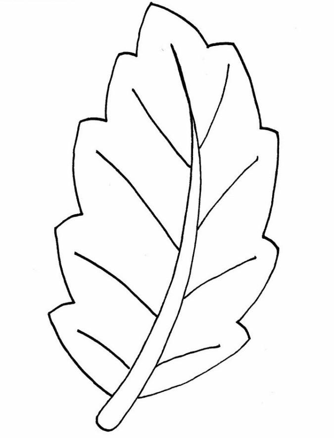 Ausmalbilder Blätter  Schöne Malvorlagen Ausmalbilder Blätter ausdrucken 3