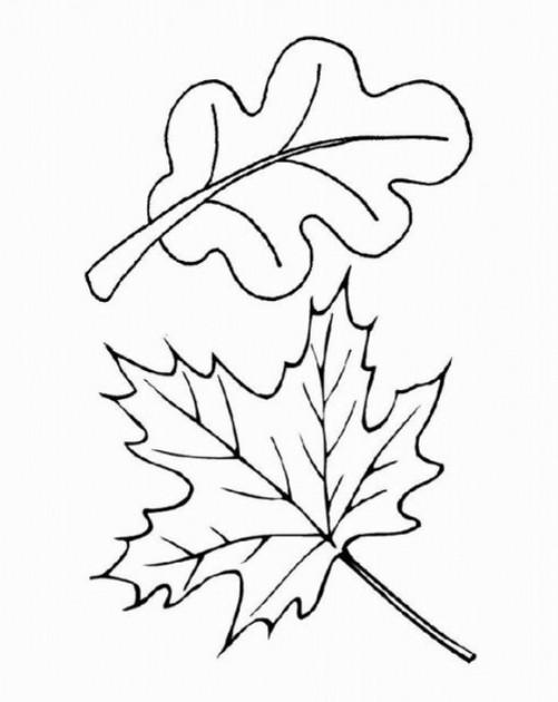 Ausmalbilder Blätter  Ausmalbilder von Blätter ausdrucken Malvorlagen kostenlos