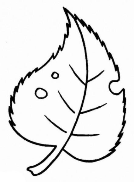 Ausmalbilder Blätter  Malvorlagen zum Ausmalen Ausmalbilder Blätter gratis 1