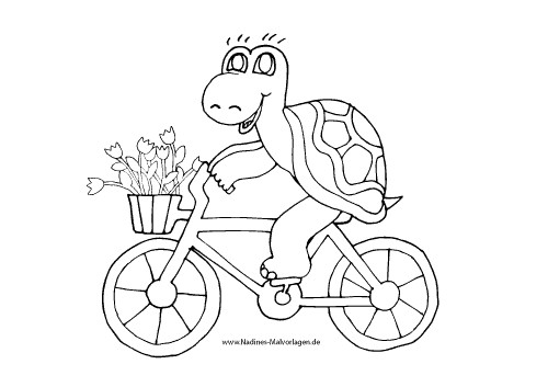 Ausmalbilder Fahrrad  Schildkröte fährt Fahrrad Nadines Ausmalbilder