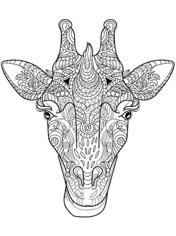 die 20 besten ideen für ausmalbilder für erwachsene tiere