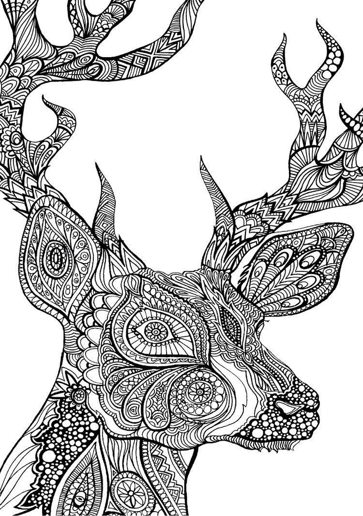 Ausmalbilder Für Erwachsene Tiere  ausmalbilder erwachsene tiere reh malvorlage ausmalen