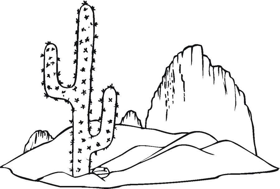 Ausmalbilder Kaktus  Ausmalbilder Ausmalbilder Kaktus zum ausdrucken