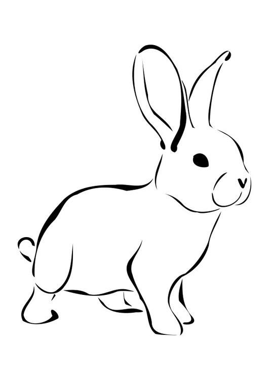 20 besten ausmalbilder kaninchen  beste wohnkultur