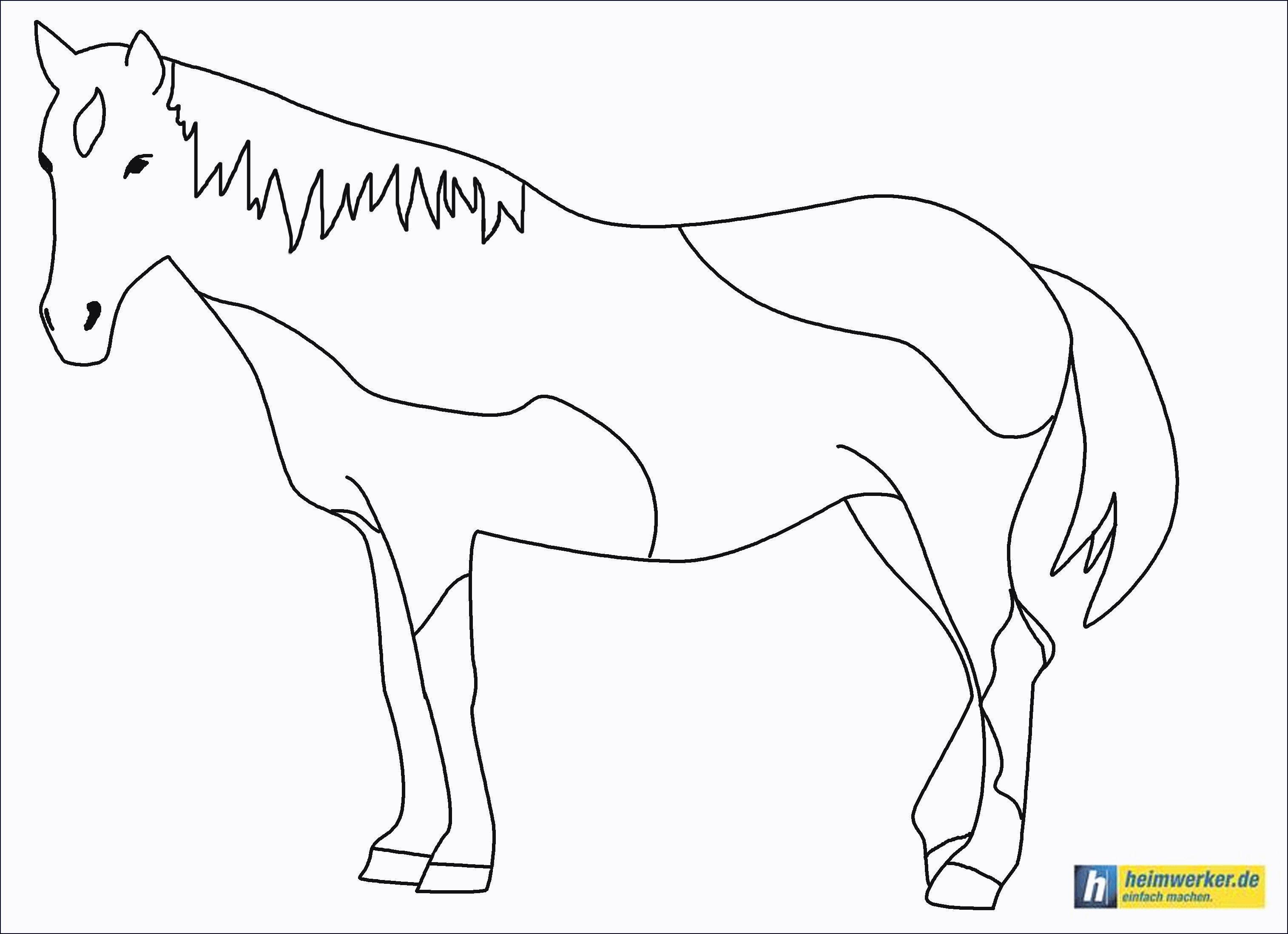 20 der besten ideen für ausmalbilder pferde mit reiter