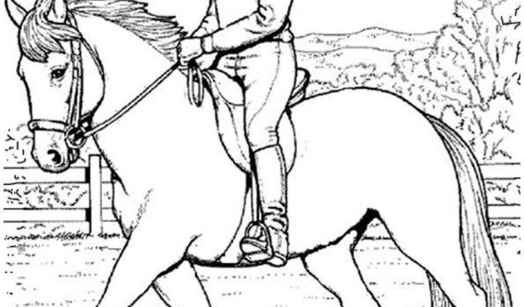 Ausmalbilder Pferde Turnier  Druckbar Ausmalbilder Pferde Mit Reiter Färbung
