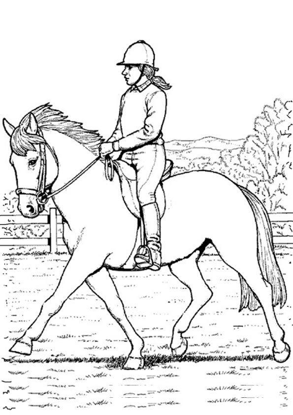 Ausmalbilder Pferde Turnier  Die besten 25 Ausmalbilder pferde Ideen auf Pinterest