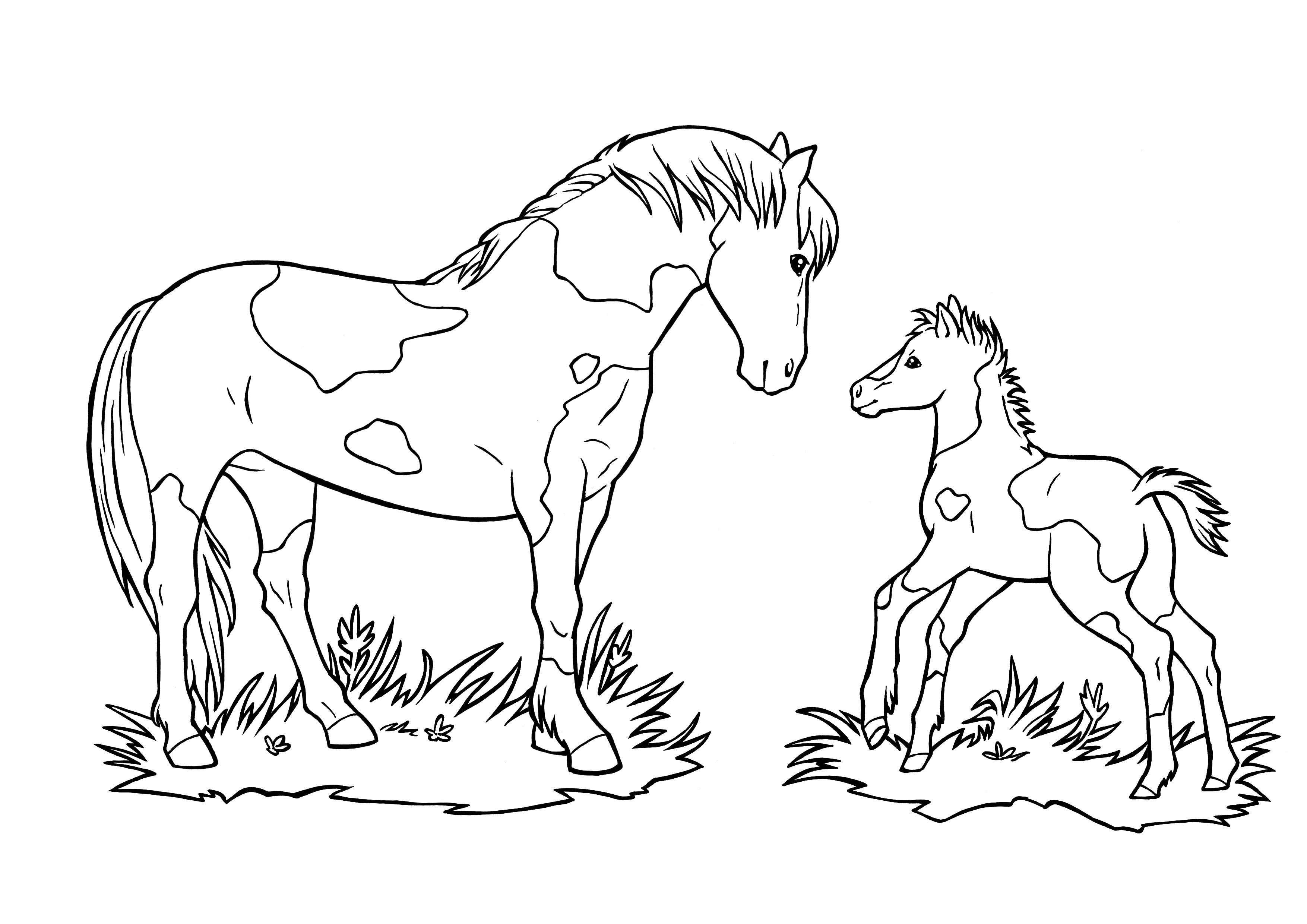 Ausmalbilder Pferde Turnier  99 Pferde Zum Ausmalen Ideen