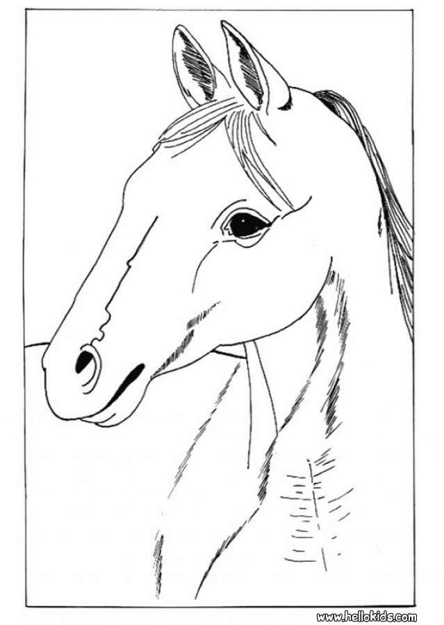 Ausmalbilder Pferdekopf  Pferdekopf zum ausmalen zum ausmalen de hellokids