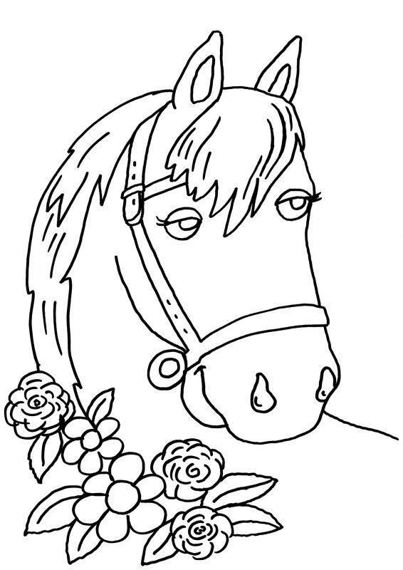 Ausmalbilder Pferdekopf  Kostenlose Ausmalbilder und Malvorlagen Pferde zum