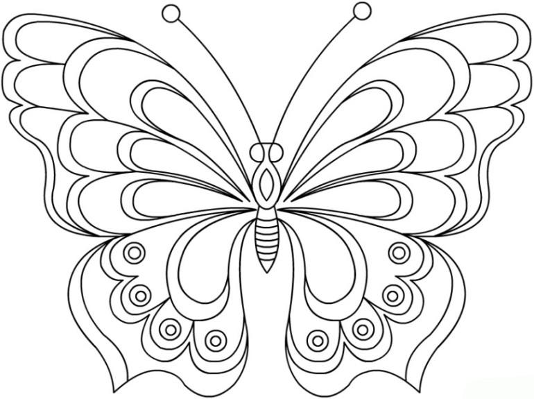 Ausmalbilder Schmetterlingsfeen  Ausmalbilder zum Drucken Malvorlage Schmetterling kostenlos 1