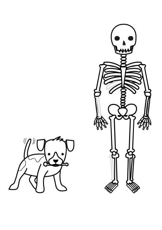 ausmalbilder dino skelett  kostenlos zum ausdrucken