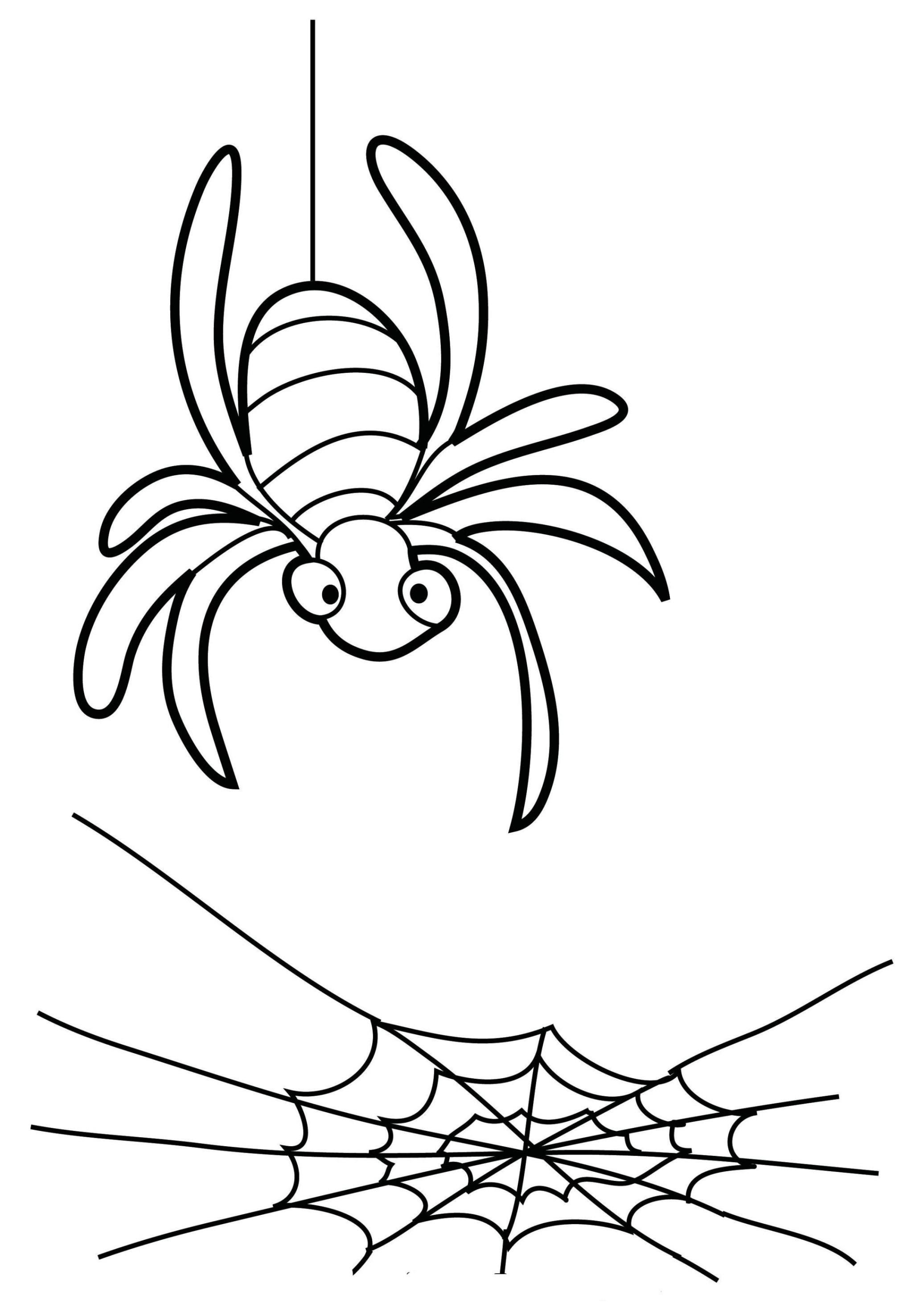 die besten ideen für ausmalbilder spinne - beste