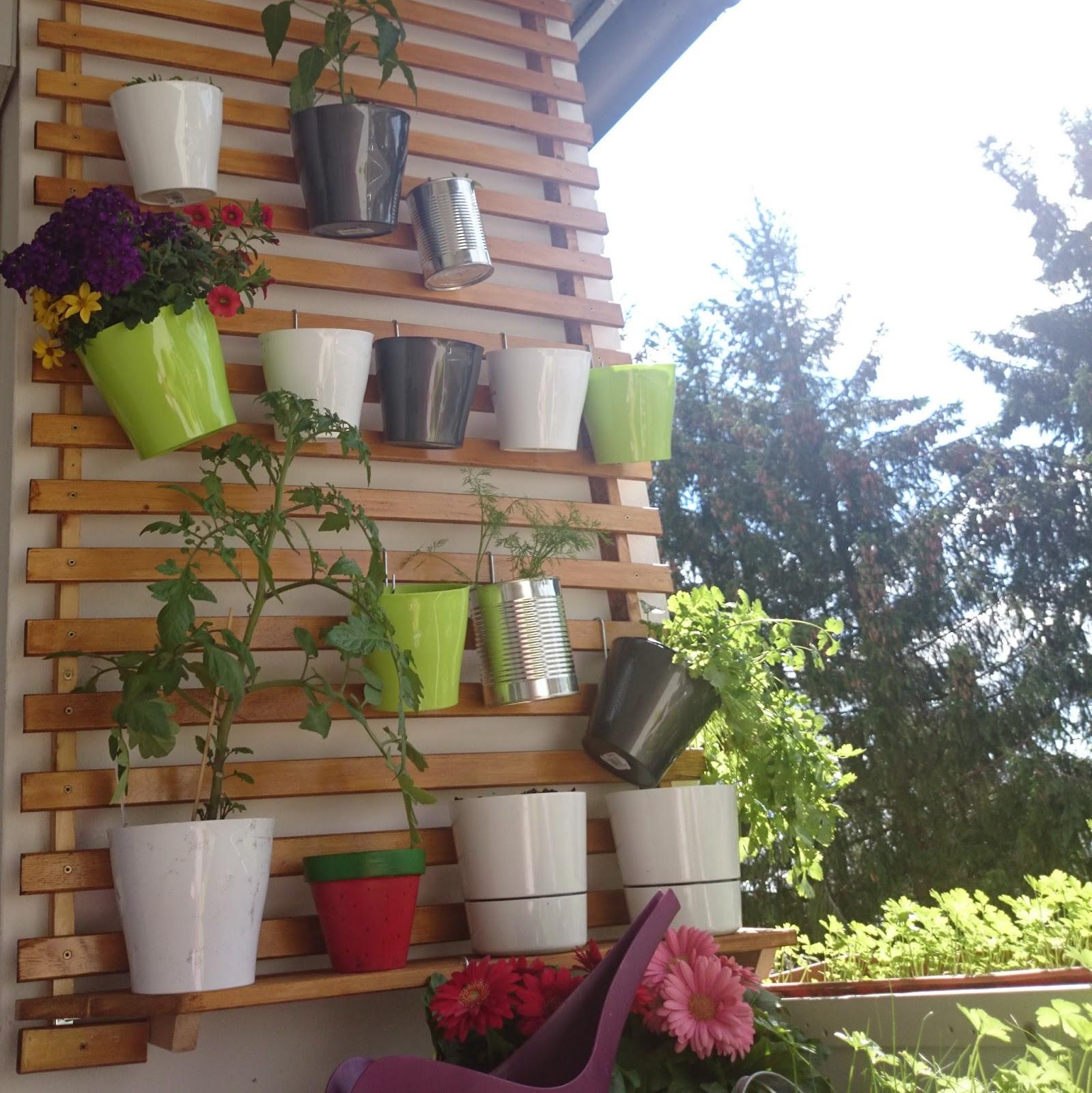 Balkon Diy  Lucciola [DIY] Balkonien Pflanzen auf Mini Balkon mit