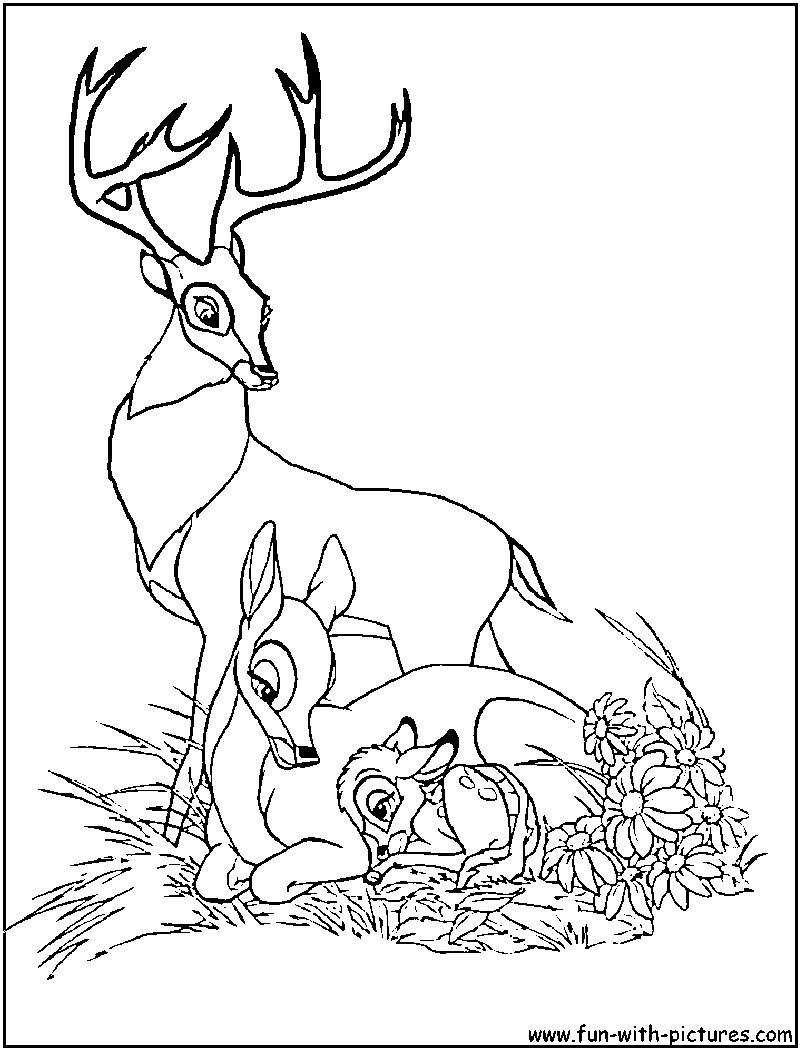 Bambi Ausmalbilder  Malvorlagen fur kinder Ausmalbilder Bambi kostenlos