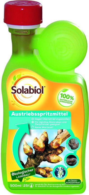 Bayer Garten  Bayer Garten Austriebsspritzmittel 500 ml Preisvergleich