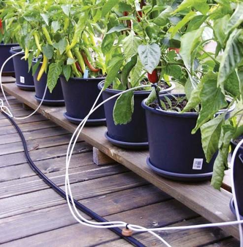 Bewässerungssystem Garten  Bewässerungssystem für Topf und Kübelpflanzen Garten WN