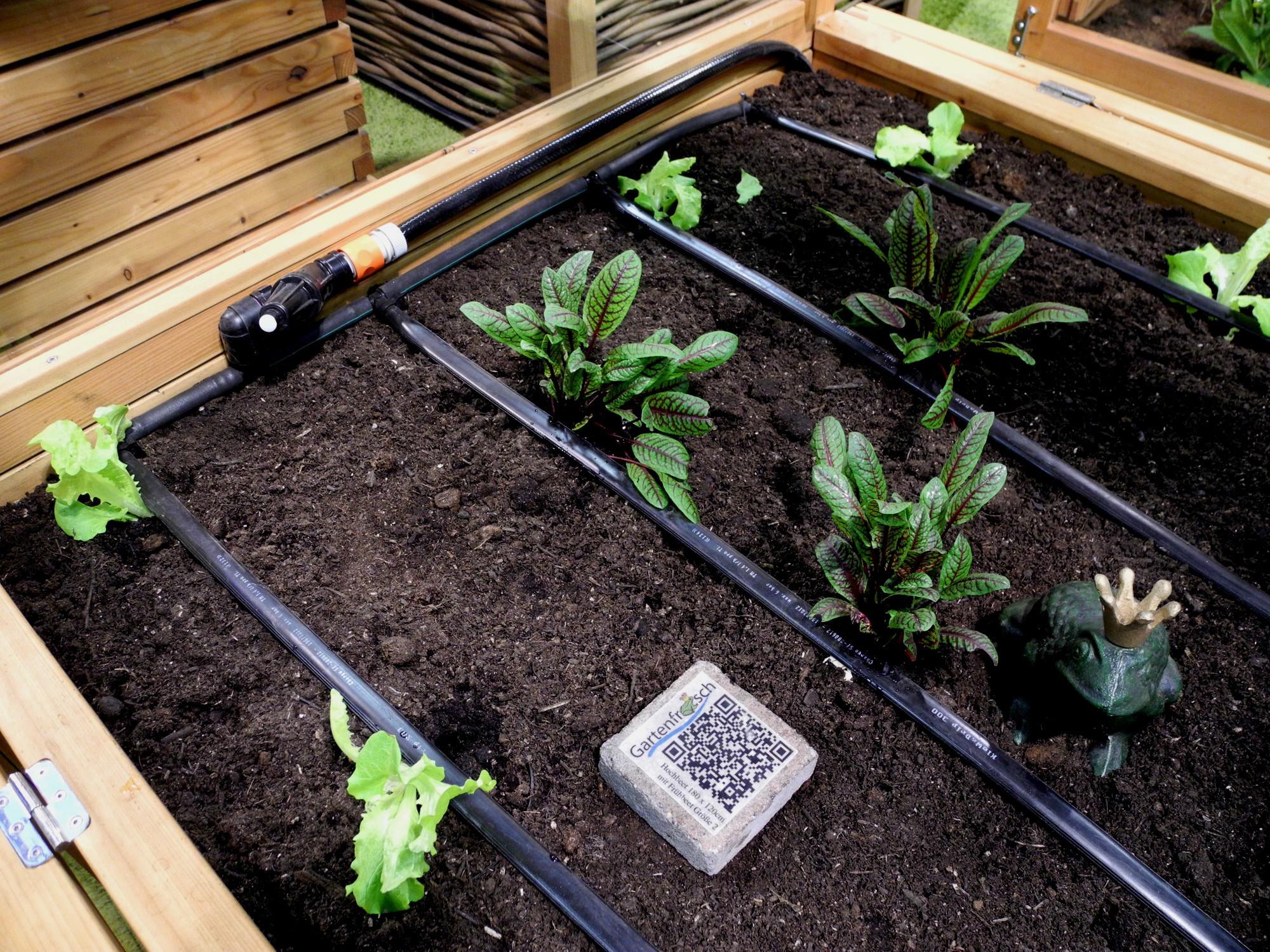 Bewässerungssystem Garten  Garten Bewässerungssystem