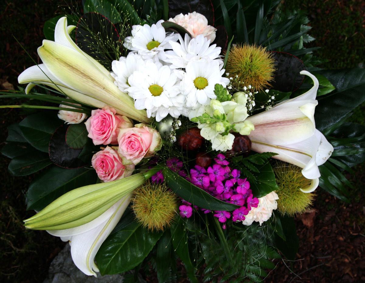 Blumen Für Geburtstag  Blumen zum Geburtstag Foto & Bild