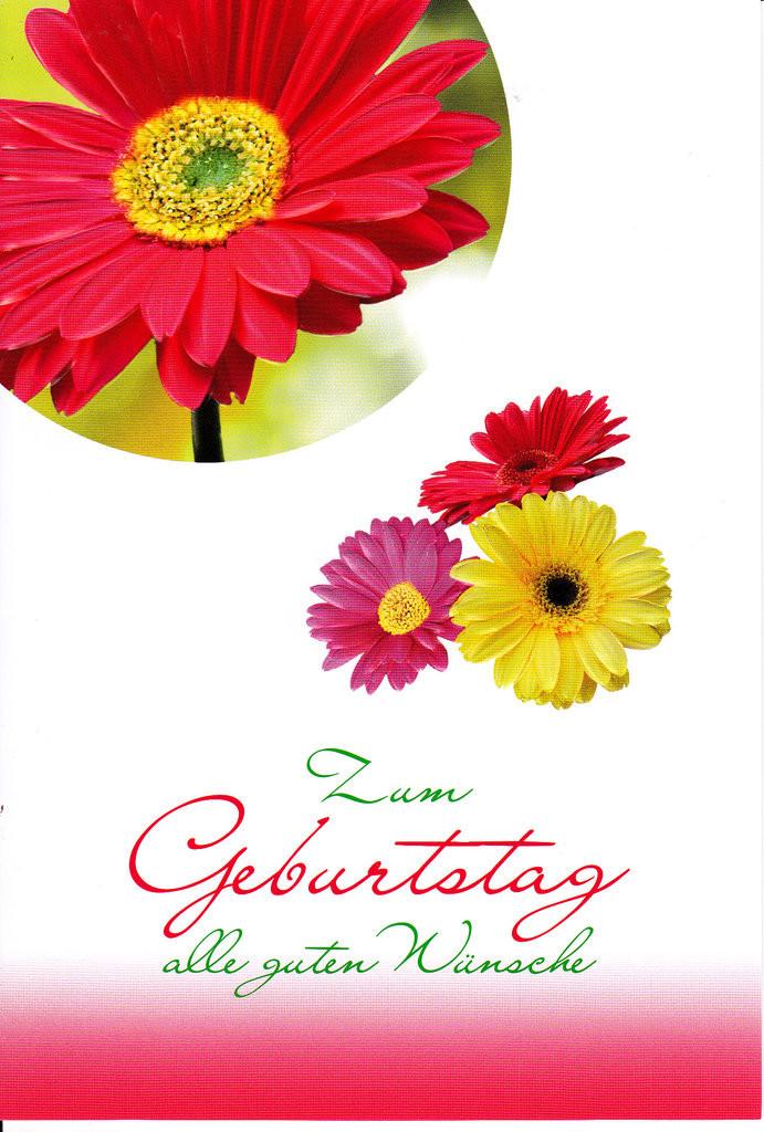 Blumen Für Geburtstag  Geburtstag Blumen Bilder