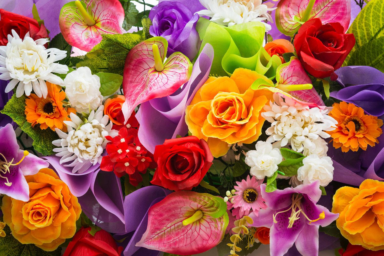 Blumen Für Geburtstag  Die richtigen Blumen für den richtigen Anlass Hilfe im Netz