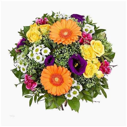 Blumen Geburtstag Bilder Kostenlos  Blumen Geburtstag Bilder Kostenlos Luxus Blume Grafik