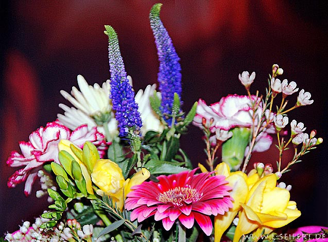 Blumen Geburtstag Bilder Kostenlos  Blumenstrauß Blumenbilder zum Geburtstag Blumenstrauß