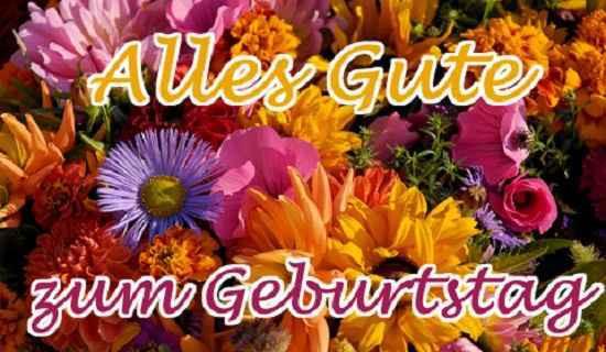 Blumen Geburtstag Bilder Kostenlos  Geburtstag Blumen