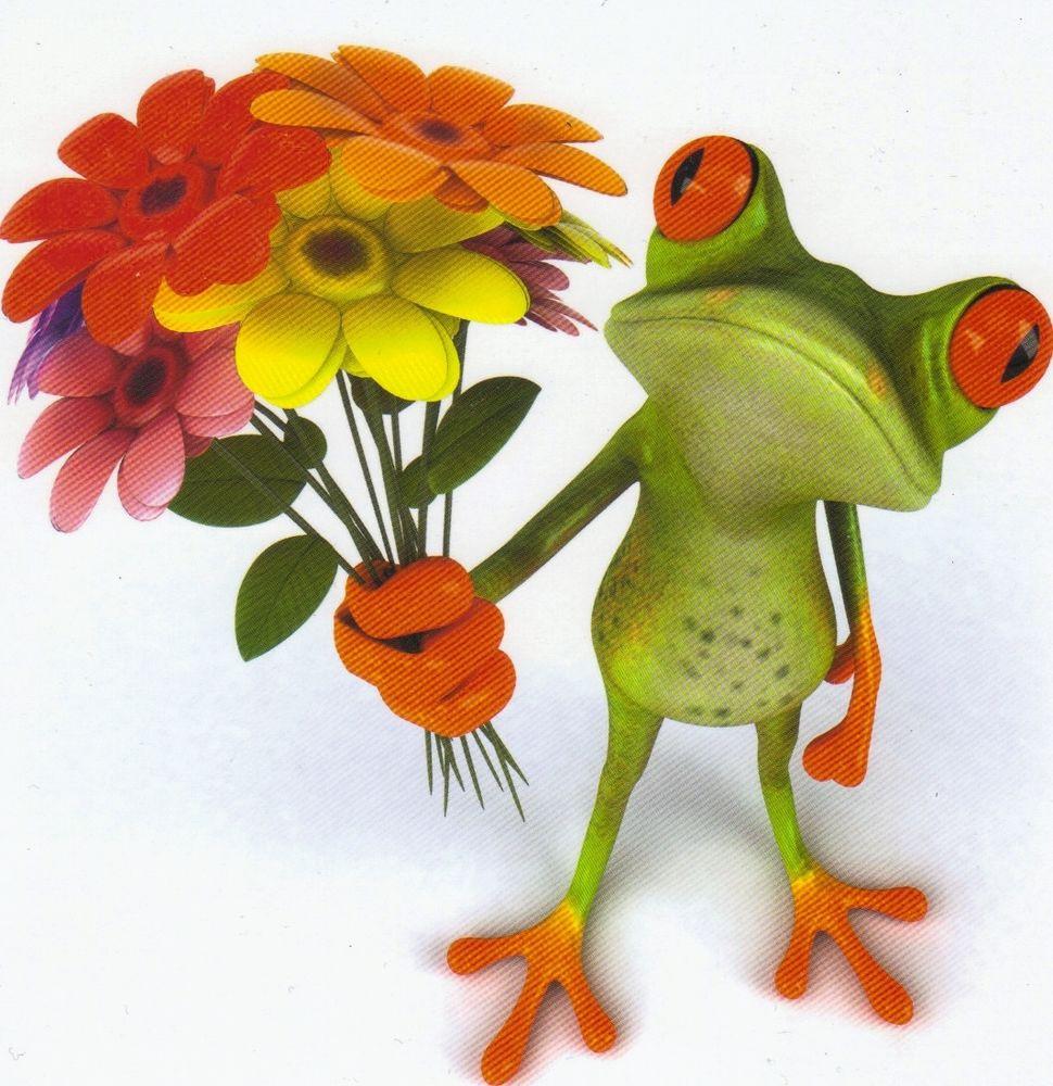 Blumen Zum Geburtstag  Klappkarte de luxe Der Blumen Frosch gratuliert zum
