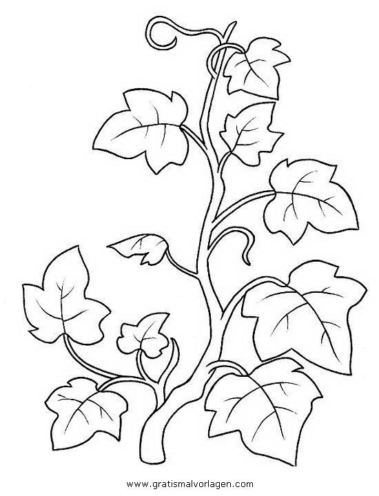 Blumenranken Ausmalbilder  blumenranken gratis Malvorlage in Blumen Natur ausmalen