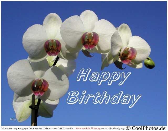 Coolphotos Geburtstagskarten Kostenlos  Www Coolphotos De Grusskarten Geburtstag HTML Erstaunlich