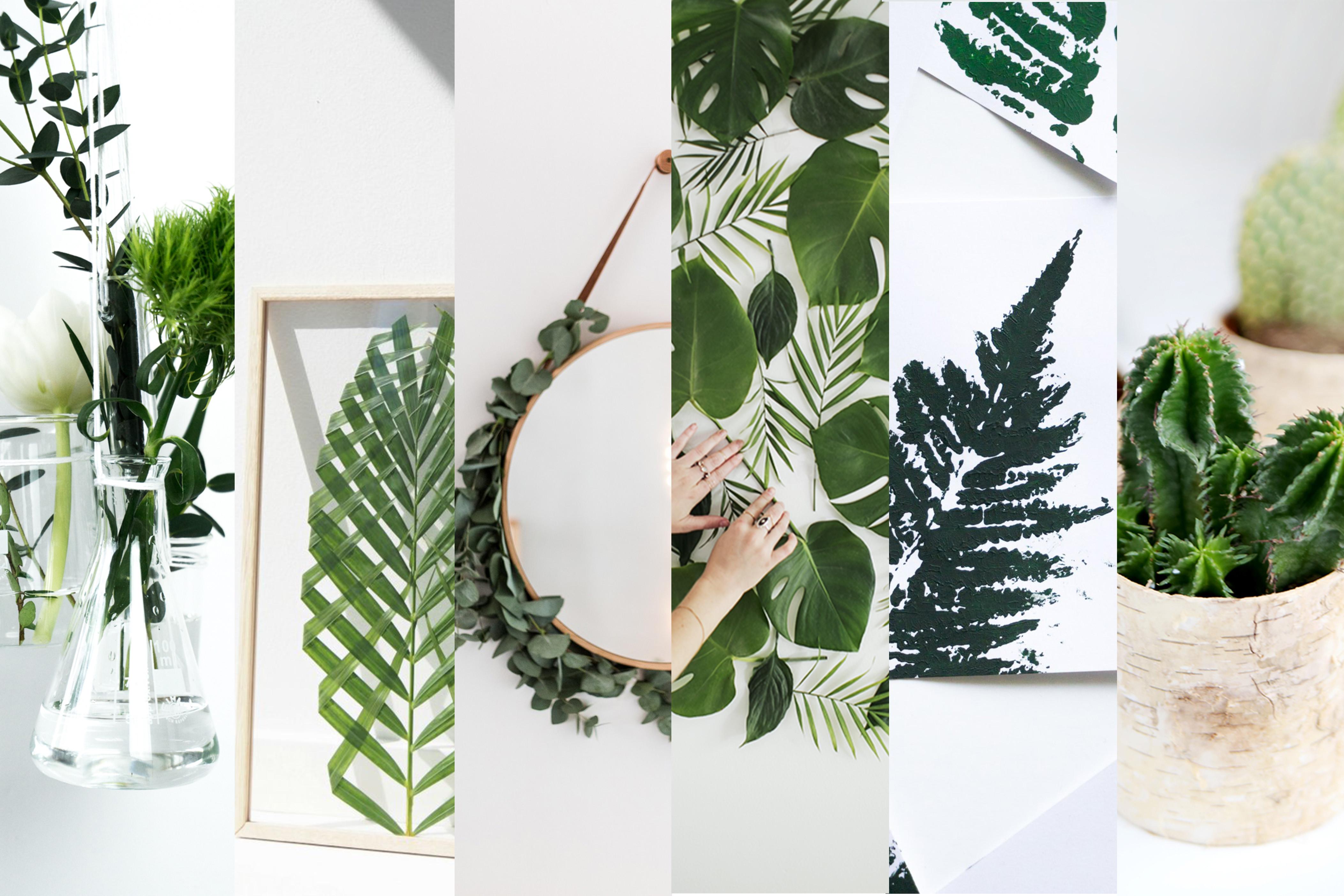 Dekoideen Diy  6 kreative Ideen für Pflanzen Deko