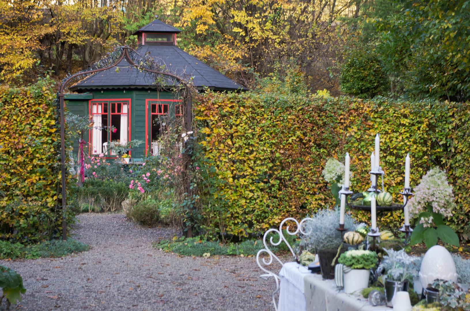 """Der Garten Wissen  Herbst """"Der Garten"""" Wissen an der Sieg Foto & Bild"""