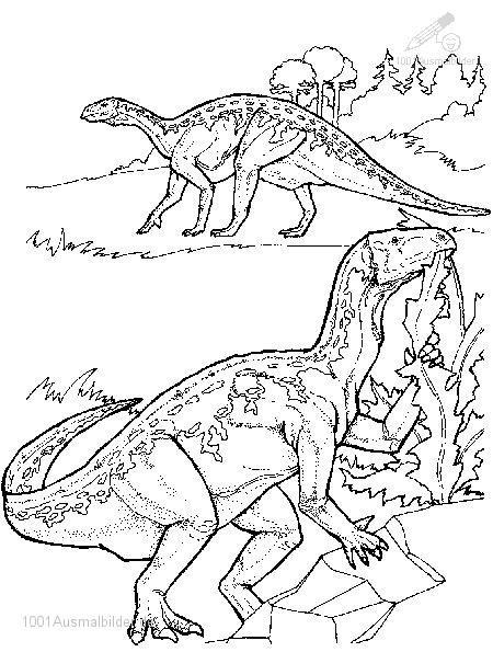 Dinosaurier Kampf Ausmalbilder  Dinosaurier Ausmalbild