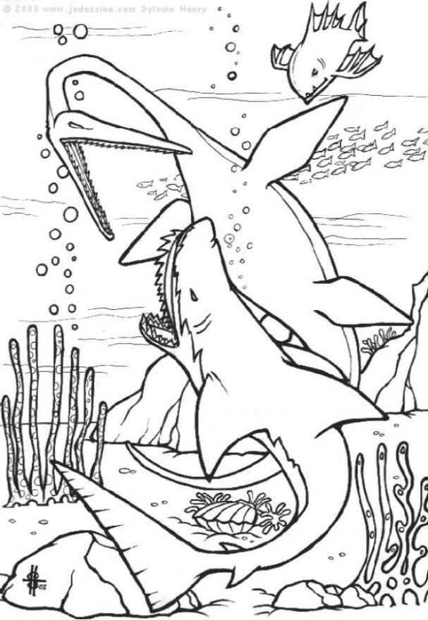 Dinosaurier Kampf Ausmalbilder  Malvorlage Dinosaurier Unterwasser