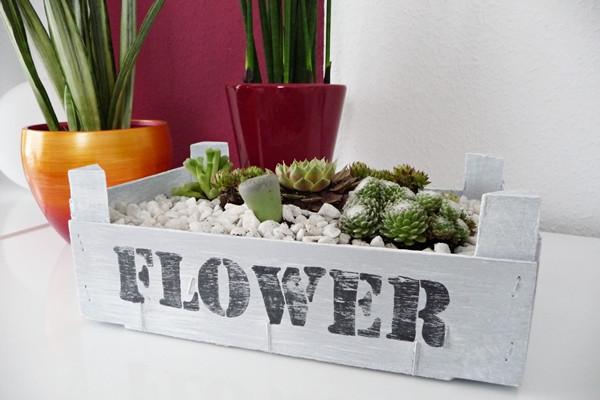 Diy Holzkiste  zauberhafte Welten DIY Holzkiste mit Succulenten Kiste