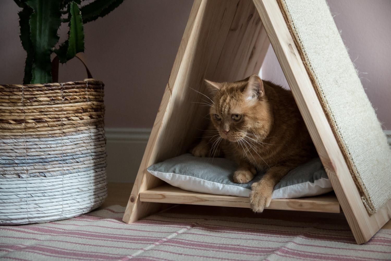 Diy Katzen  DIY Katzentipi – Schlafplatz und Kratzmöbel in einem