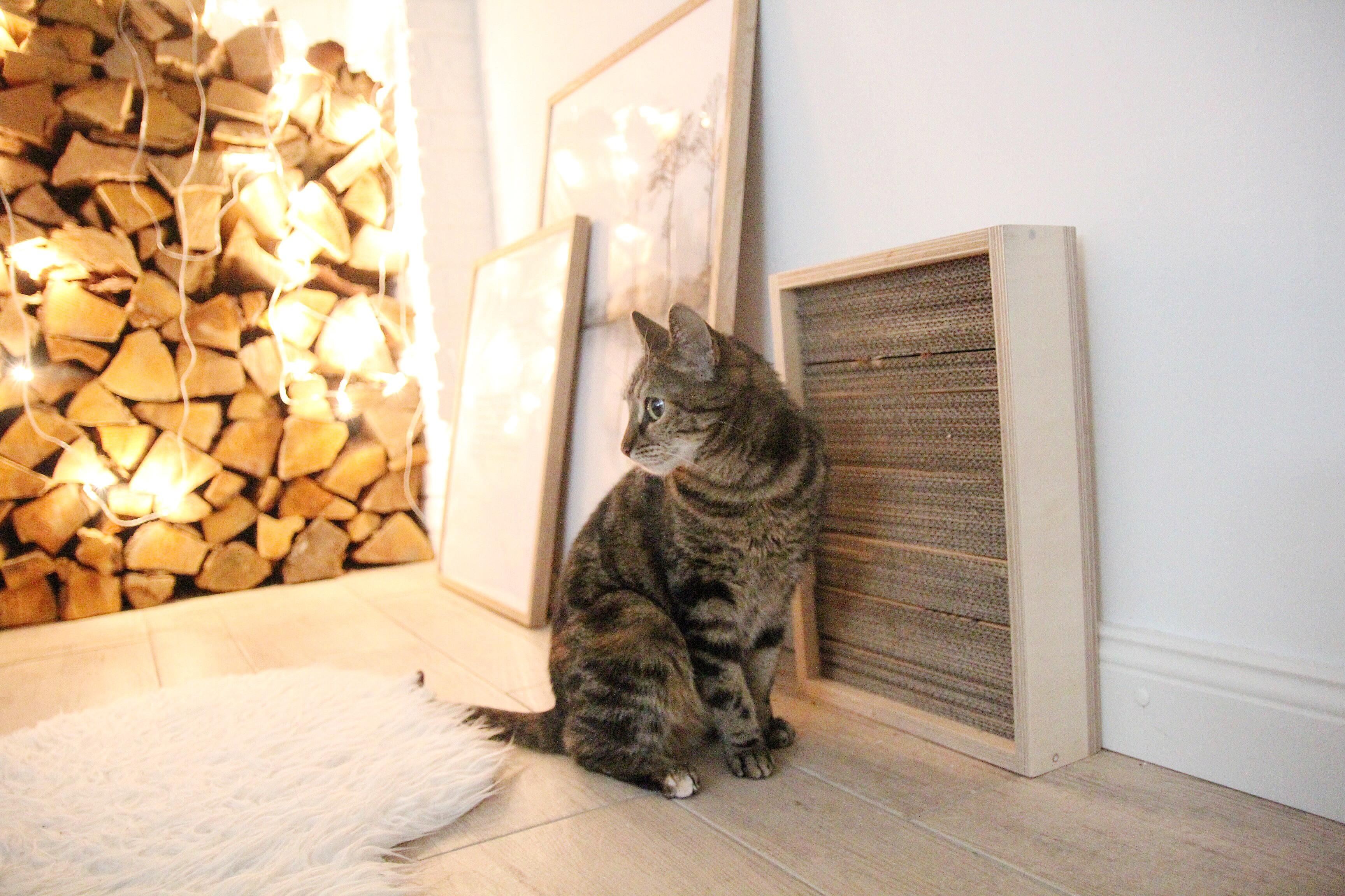 Diy Katzen  DIY Katzen Kratzbrett selber machen DESIGN DOTS