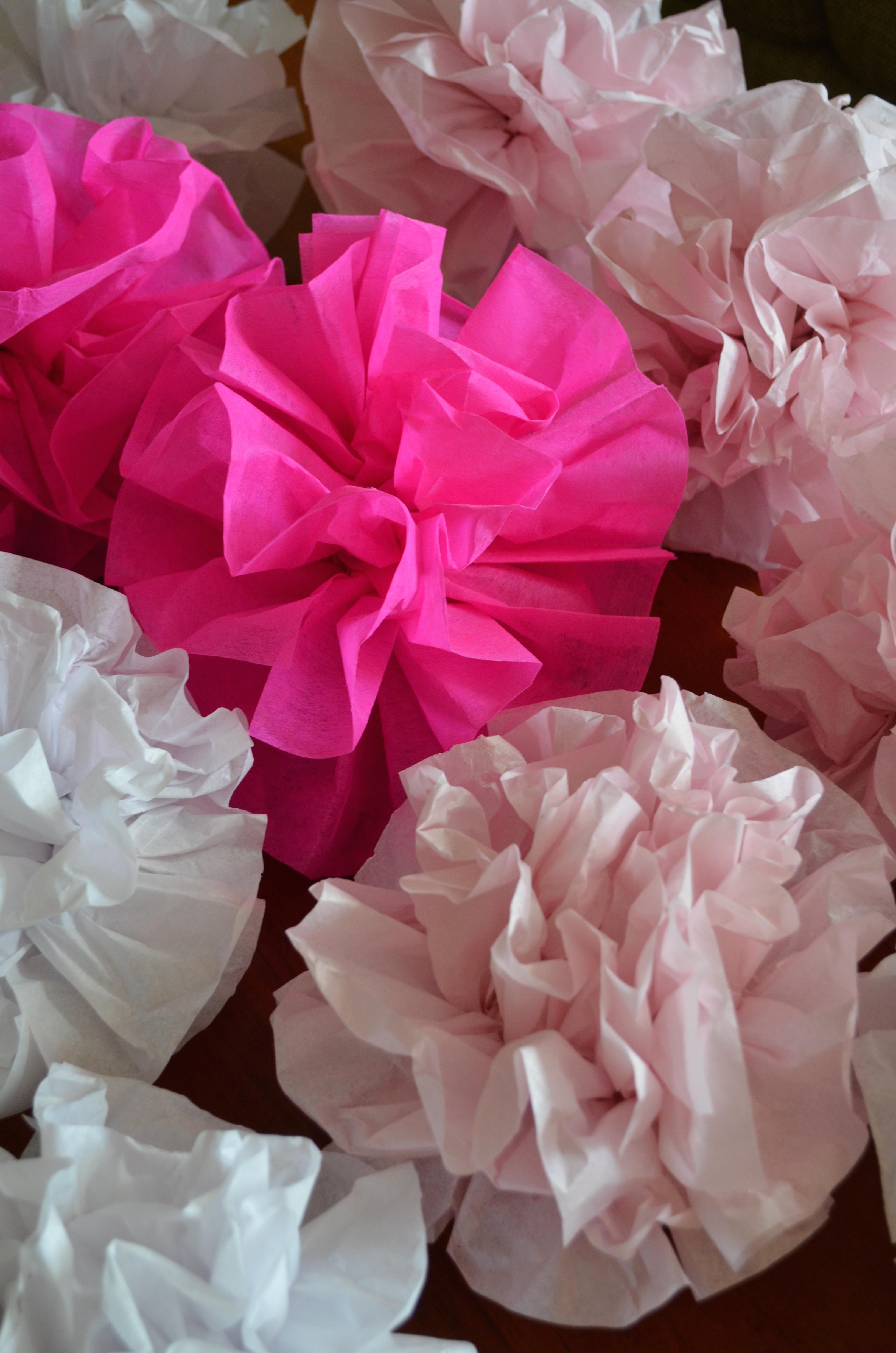 Diy Pom Poms  DIY Tissue Paper Pom Poms