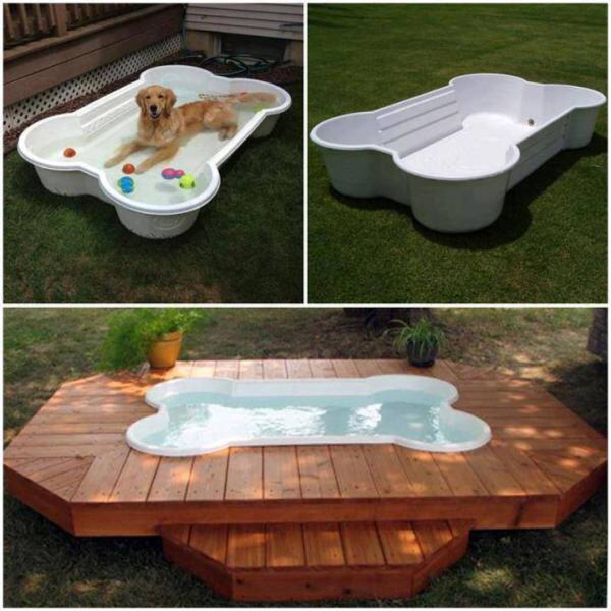 Diy Pool  Build a DIY Dog Pool to Keep Your Pup Cool
