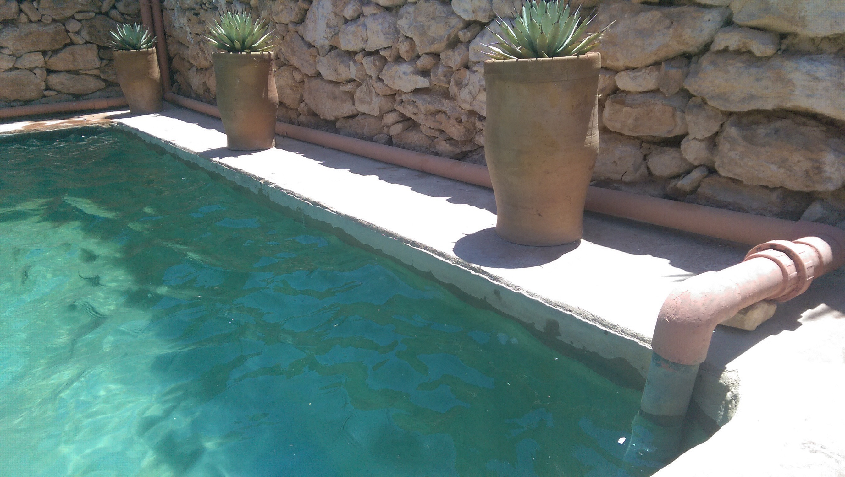 Diy Pool  Top 10 tips for building an affordable DIY natural pool