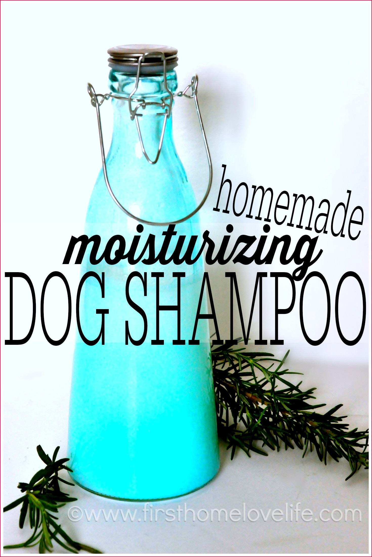 Diy Shampoo  Homemade Dog Shampoo First Home Love Life