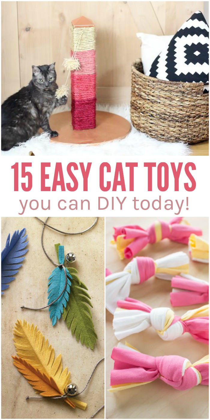 Easy Diy  15 Easy DIY Cat Toys You Can Make for Your Kitty TODAY