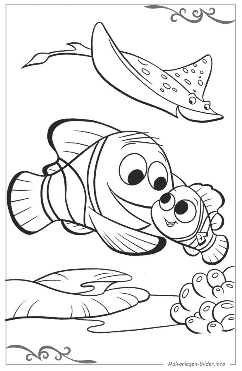 Findet Nemo Ausmalbilder  Findet Nemo ausmalbild für kinder zum ausdrucken