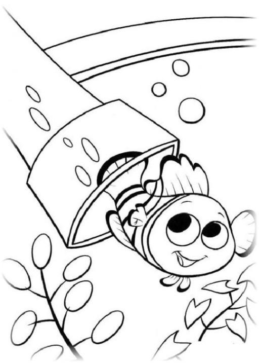 Findet Nemo Ausmalbilder  Vorlagen zum Ausdrucken Ausmalbilder Findet Nemo Malvorlagen 2