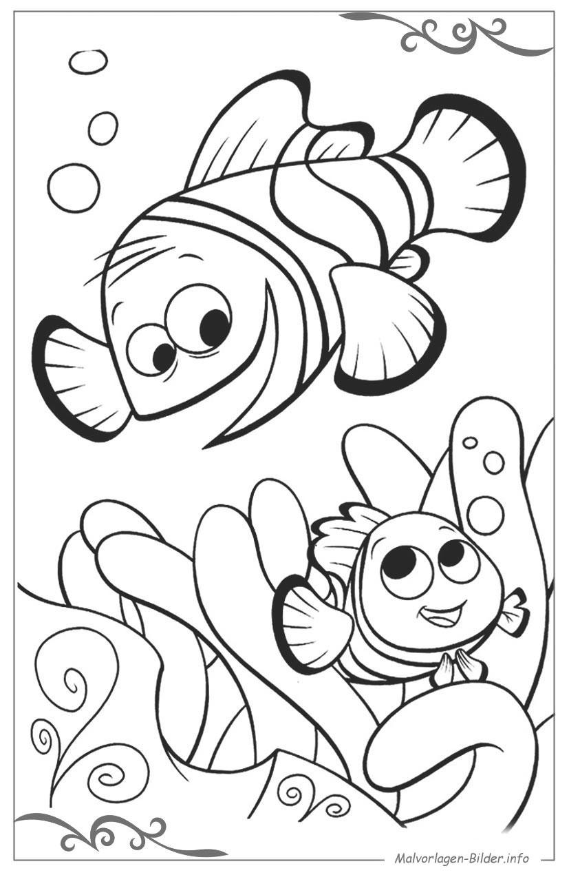Findet Nemo Ausmalbilder  Findet Nemo ausmalbilder zum ausdrucken