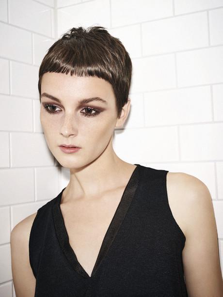 Frisuren Kurzhaar  Damen frisuren kurzhaar